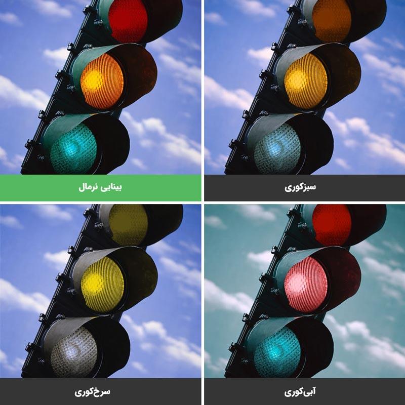 انواع دو رنگ بینی