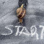 6 روش برای سرعت بخشیدن به همکاری با مشتریان