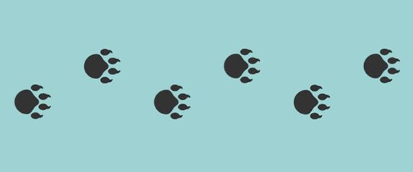 ساخت انیمیشن جای پای خرس با استفاده از CSS