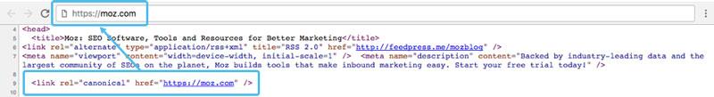 نمونه کد tag canonical
