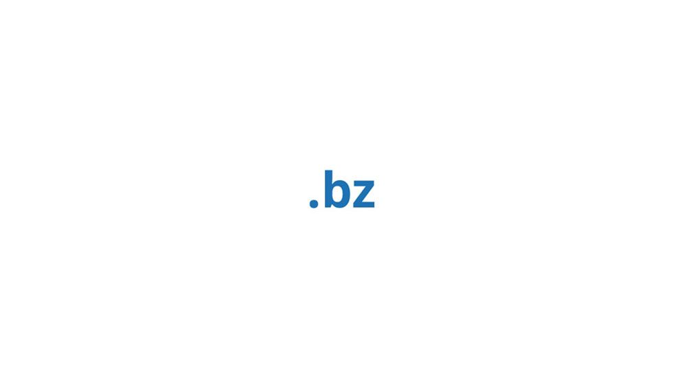 ثبت دامنه bz.