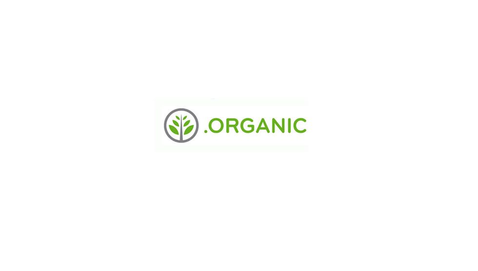 ثبت دامنه organic.